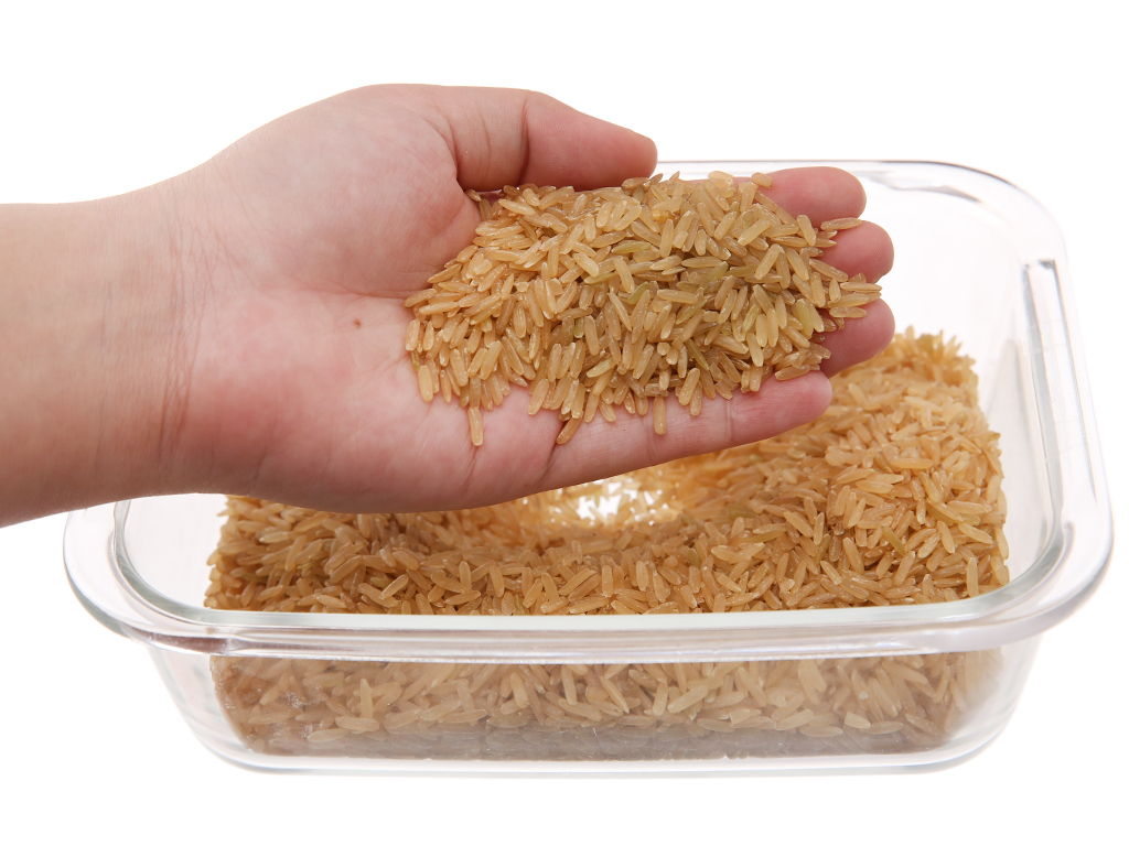 Gạo mầm Vibigaba hộp 1kg 3