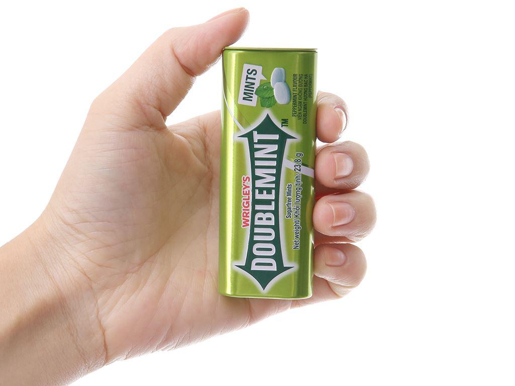 Viên ngậm không đường hương bạc hà DoubleMint hộp 23.8g 5