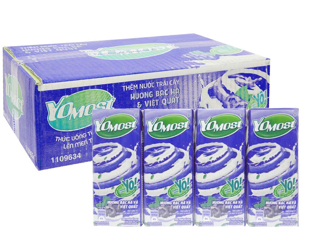 Thùng 48 hộp sữa chua uống bạc hà, việt quất YoMost 170ml 1
