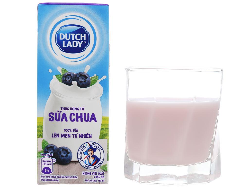 Thùng 48 hộp sữa chua lên men vị việt quất bạc hà Dutch Lady 180ml 8
