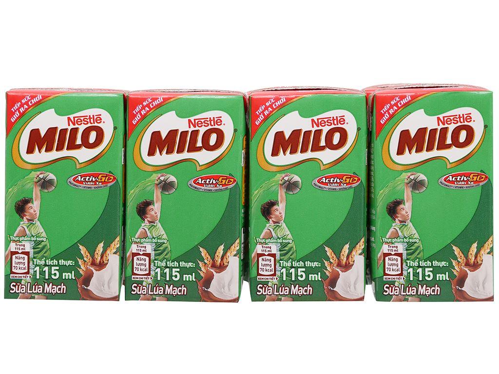 Thùng 48 hộp lốc 8 sữa lúa mạch Milo Active Go 115ml 2