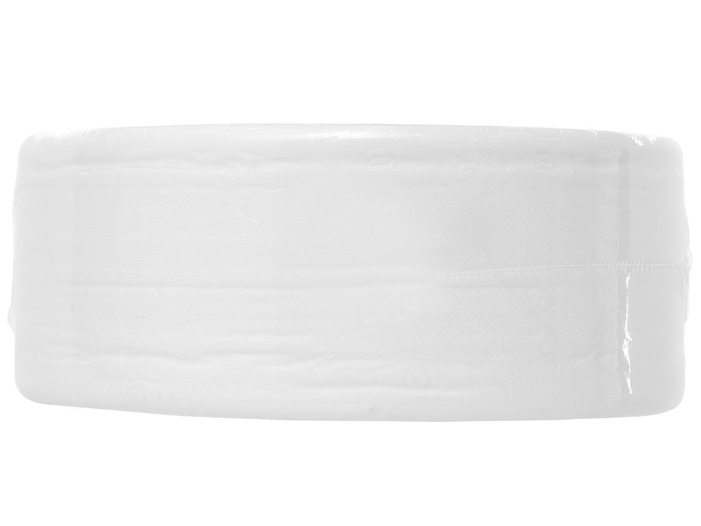 Giấy vệ sinh cuộn lớn NTPM VinaRoll 2 lớp 700g 2
