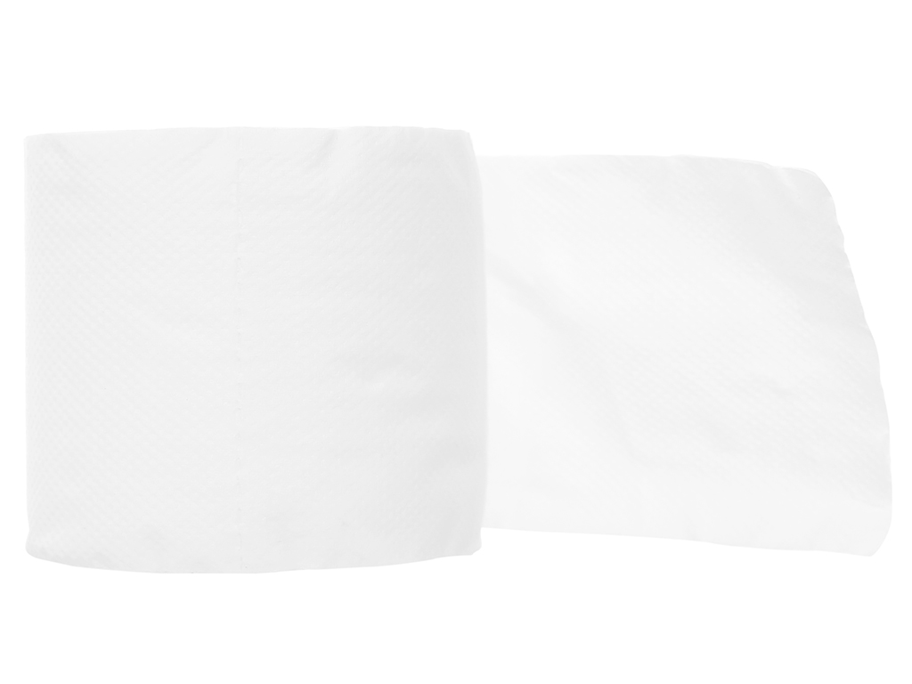 10 cuộn giấy vệ sinh Nano 2 lớp 3