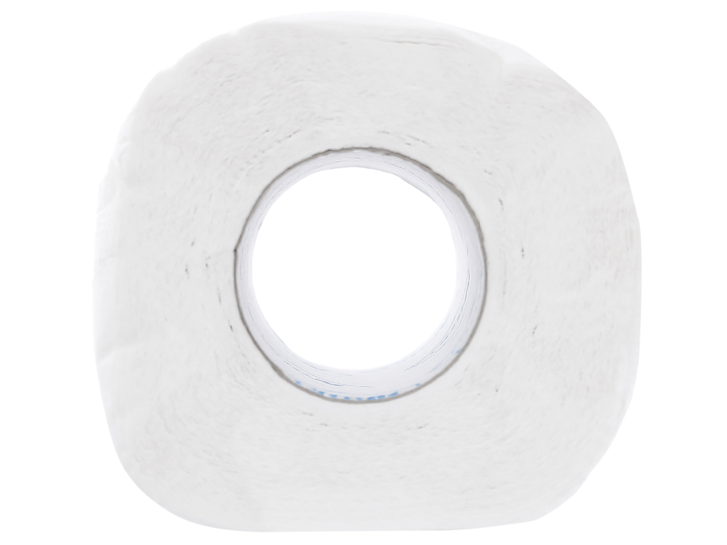 10 cuộn giấy vệ sinh Nano 2 lớp 4