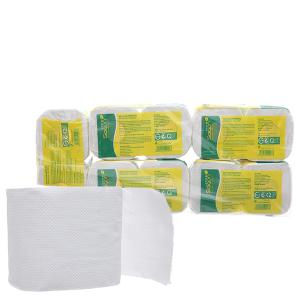 10 cuộn giấy vệ sinh Saigon Eco 2 lớp