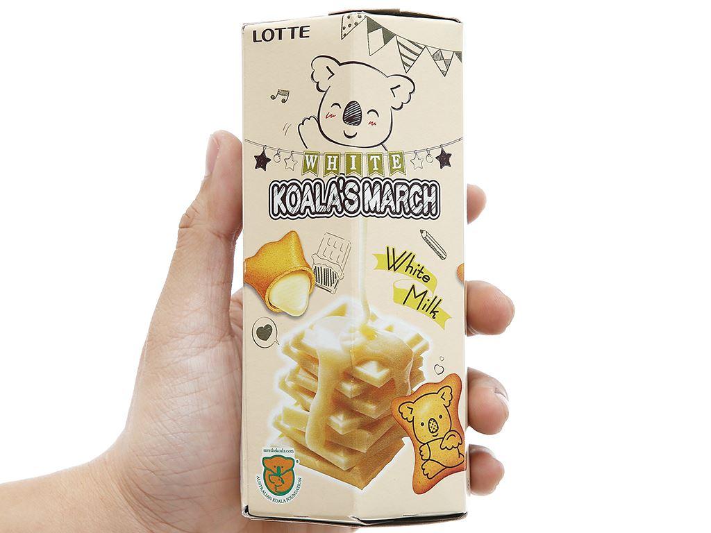 Bánh gấu nhân socola trắng Lotte Koala's March hộp 37g 6