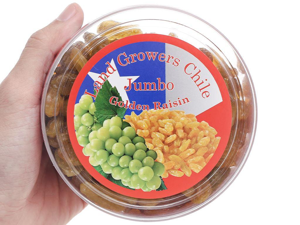 Nho khô vàng Jumbo Golden hộp 250g 6