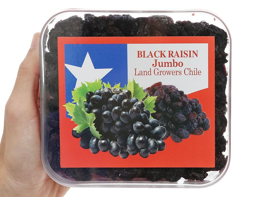 Nho đen khô Jumbo Black hộp 400g 8