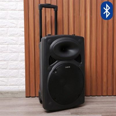 Loa Kéo Karaoke Bluetooth Enkor L1218K Đen