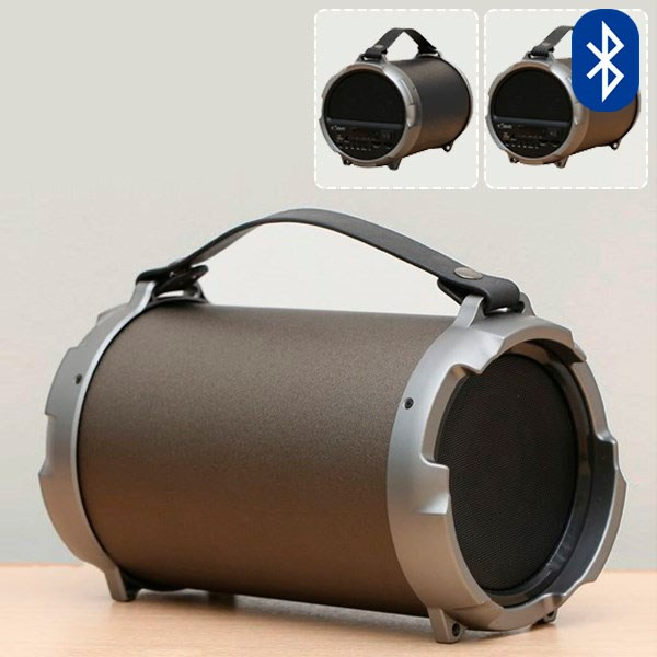 Loa Bluetooth eSaver S12B