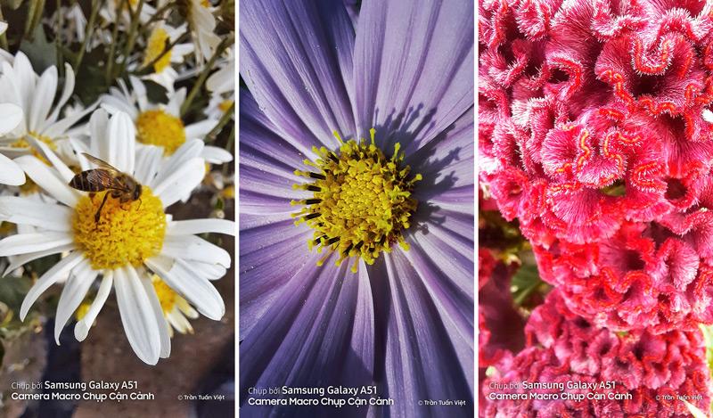 Samsung Galaxy A51 8GB | Ảnh chụp cận cảnh