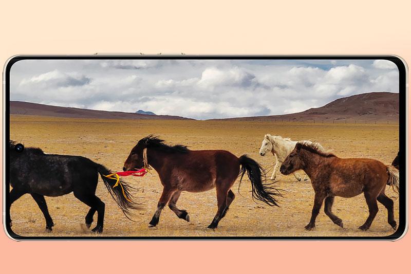 Điện thoại Vivo X60 Pro Plus | Màn hình giải trí sắc nét, 120 Hz