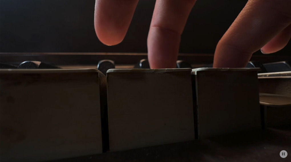 Chế độ video macro - iPhone 13 Pro 512GB