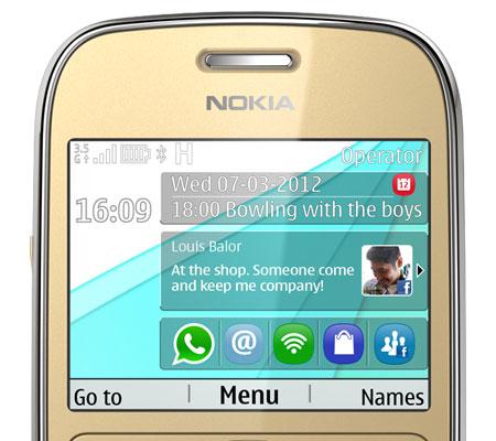 Nokia N302 (Asha 302)-hình 17