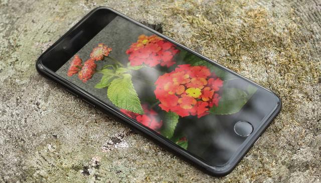 Màn hình hiển thị tốt trên điện thoại iPhone 7
