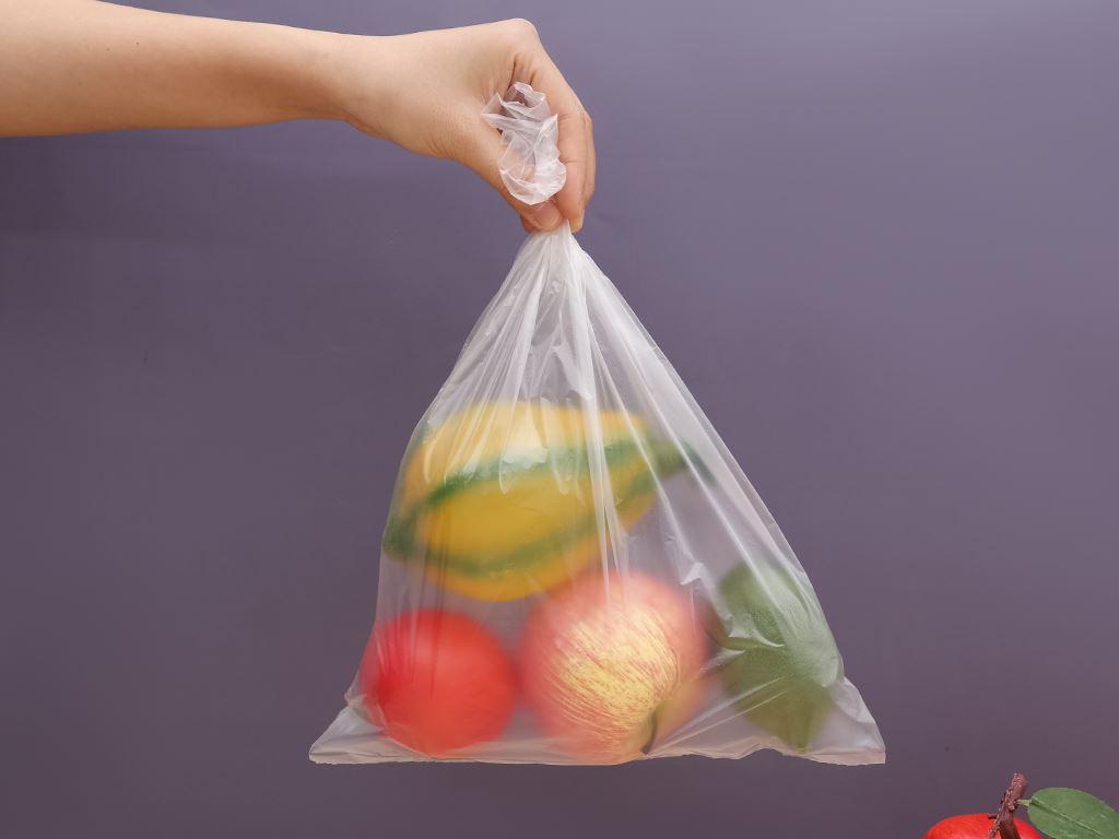 Túi đựng thực phẩm tự hủy sinh học Bách hóa XANH 25 x 35 cm (120 túi) 5
