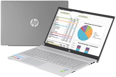 HP Pavilion 15 cs2057TX i5 8265U/4GB/1TB/ MX130/Win10 (6YZ20PA)