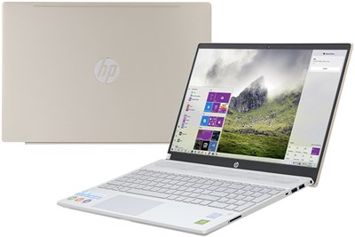 HP Pavilion 15 cs2056TX i5 8265U/4GB/1TB/2GB MX130/Win10 (6YZ11PA)