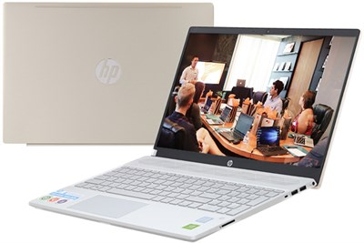 HP Pavilion 15 cs2056TX i5 8265U/4GB/1TB/2GB MX130/Win10 (6YZ11PA)