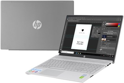 HP Pavilion 15 cs2120TX i5 8265U/8GB/1TB/2GB MX130/Win10 (8AG58PA)