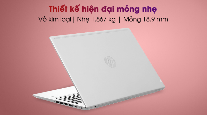 HP ProBook 455 G7 R7 (1A1B1PA)