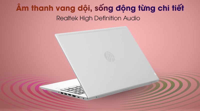 HP ProBook 455 G7 R7 (1A1B1PA) - Âm thanh