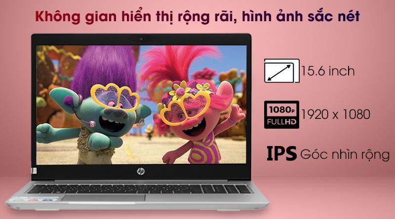 HP ProBook 455 G7 R7 (1A1B1PA) - Màn hình