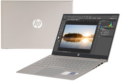 HP Pavilion 14 dv0013TU i7 1165G7/8GB/512GB/Office H&S2019/Win10 (2D7B8PA)