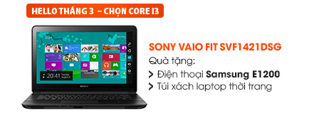 Laptop Sony Vaio Fit SVF1421DSG I3-3217U/2G/500G/Win8