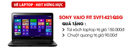Laptop Sony Vaio Fit SVF1421QSG i3 3217U/2G/750G/Win8