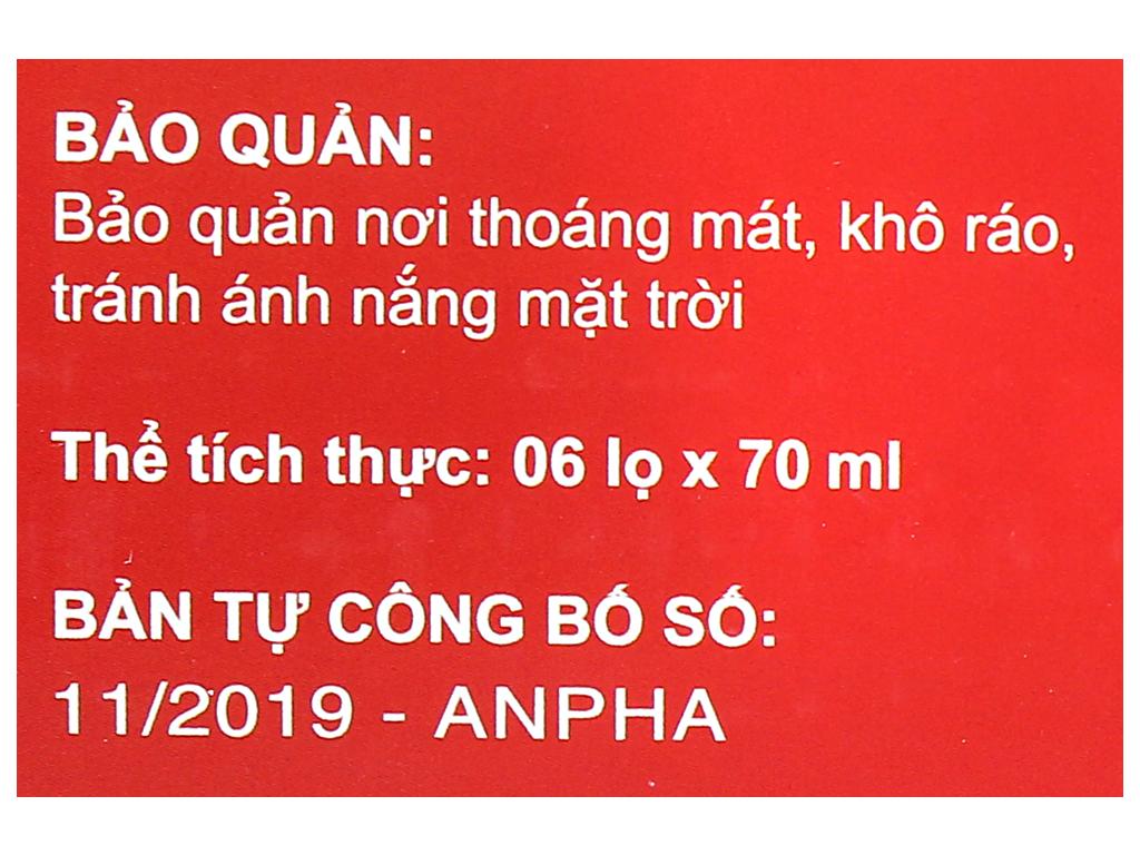Hộp 6 hũ tổ yến chưng đông trùng hạ thảo Sài Gòn Anpha 70ml 9