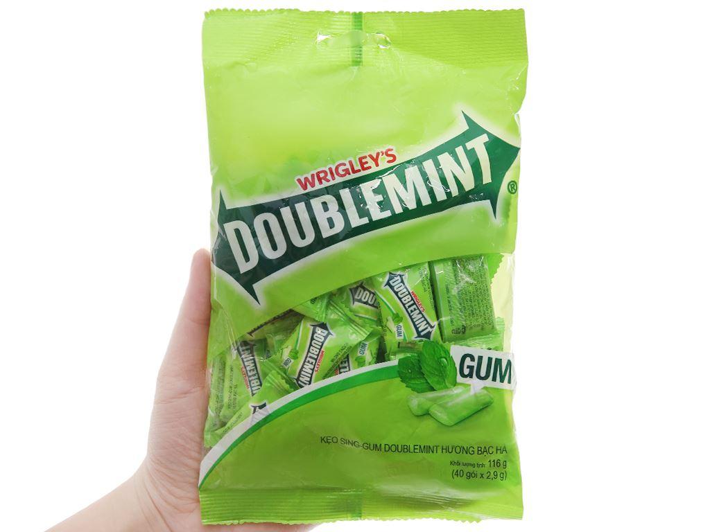 Kẹo sing-gum DoubleMint hương bạc hà gói 116g 3