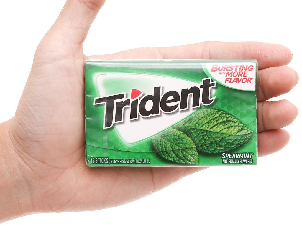 Kẹo gum không đường Trident hương bạc hà hộp 26.6g 4