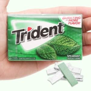 Kẹo gum không đường Trident hương bạc hà hộp 26.6g