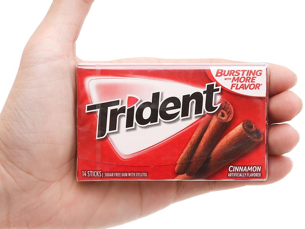 Kẹo gum không đường Trident hương quế vỉ 26.6g 4