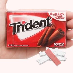 Kẹo gum không đường Trident hương quế vỉ 26.6g