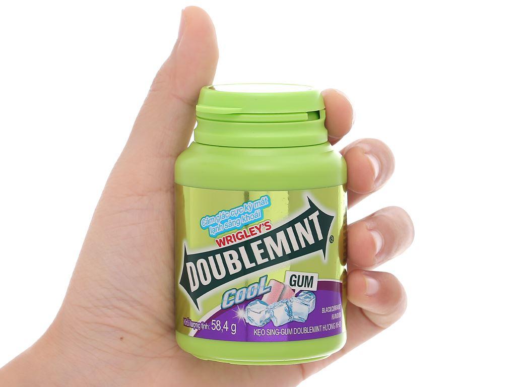 Kẹo sing-gum DoubleMint Peppermint hương nho hũ 58.4g 4