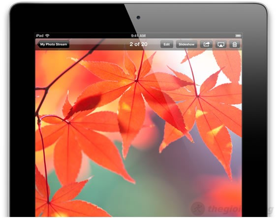 Hình ảnh rực rỡ và sắc nét trên ipad 4