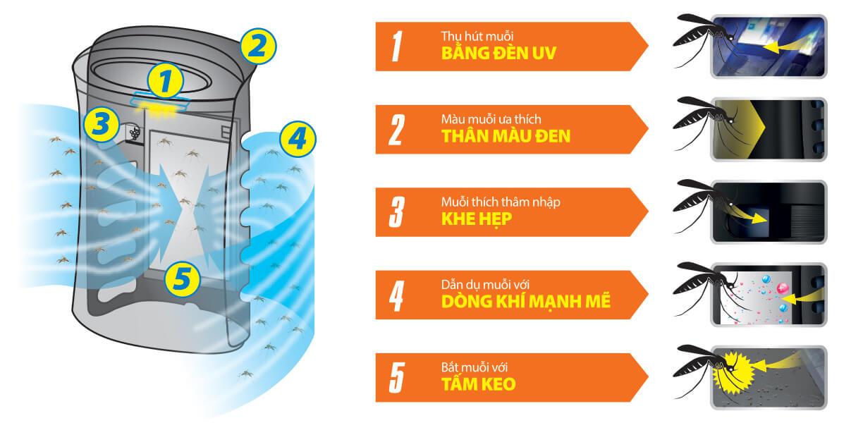 Cơ chế bắt muỗi 5 bước