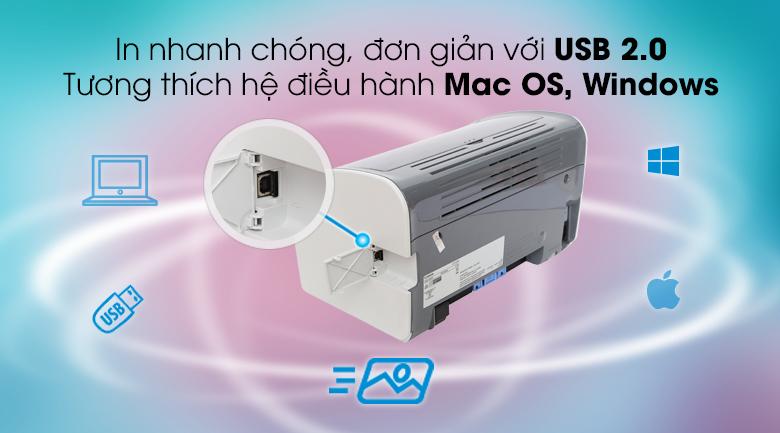 Máy in Laser Canon LBP2900 - Cổng kết nối