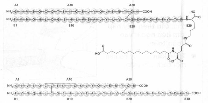 Công thức phân tử:  Insulin degludec: Số CAS: 844439-96-9
