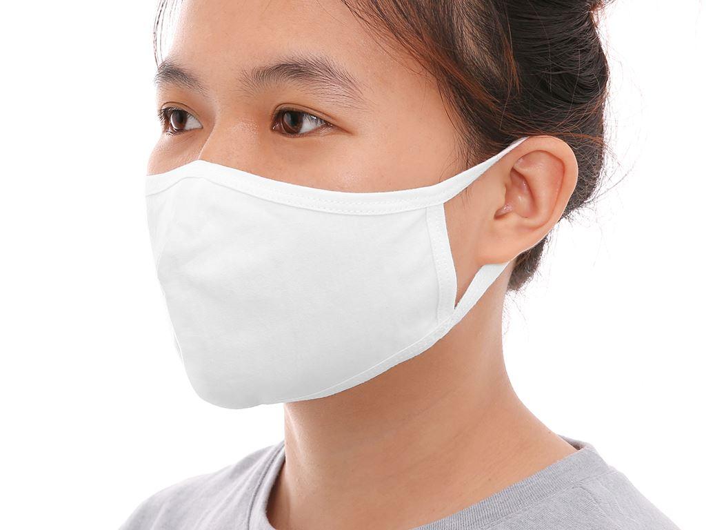 Khẩu trang vải kháng khuẩn Shine Active 2 lớp gói 3 cái 5