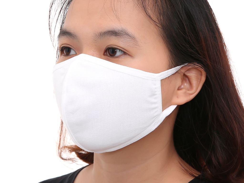 Khẩu trang vải kháng khuẩn Viet Mask 2 lớp gói 3 cái 12