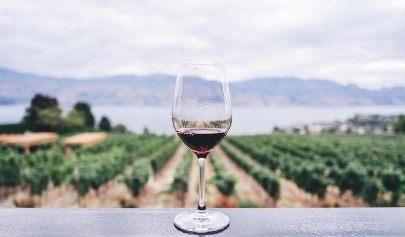 Hệ thống giảm rung lắc bảo vệ cho quá trình lên men rượu không bị ảnh hưởng