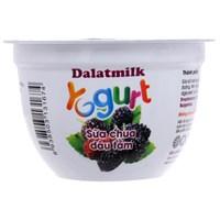 Sữa chua Dalat Milk vị Dâu tằm 100g