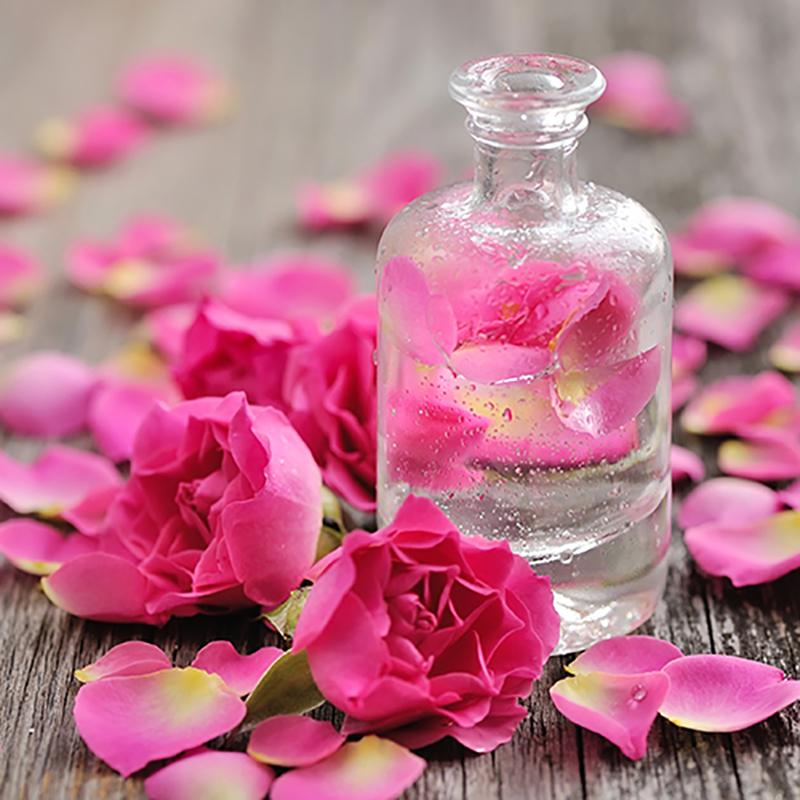1. Toner hoa hồng