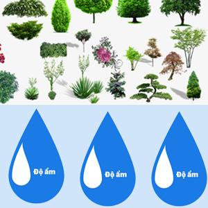Thành phần chứa các chiết xuất từ thực vật giúp cung cấp độ ẩm, ngăn ngừa và làm giảm thiểu các vết sạm nám, xỉn màu, làm mịn bề mặt,phục hồi  từ sâu bên trong