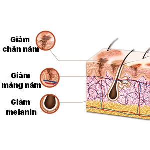 Giảm thiểu sự hình thành sắc tố melanin - nguyên nhân gây nên hiện tượng sạm nám, trả lại cho bạn làn da mềm mại, trẻ trung