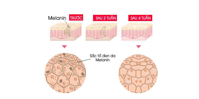 Melanin trong da sẽ ảnh hưởng theo thời gian việc sản xuất nhiều Melanin khiến da bị sẫm màu. Khi sử dụng sữa dưỡng trắng da OHUI thì Melanin trong da sẽ sản sinh chậm lại, từ đó vết nám sẽ mờ hơn, trả lại làn da tươi trẻ trắng sáng hơn