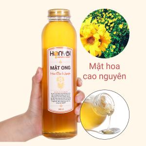 Mật ong hoa cao nguyên Honybi chai 500ml